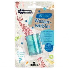 PhänoMINT Wilder Wasserwirbler