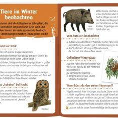 Expedition Natur - Natur aktiv: Natur erleben im Herbst & Winter