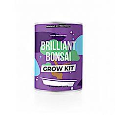 Grow Kit - Brilliant Bonsai