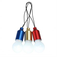 Mini LED Light Bulb - Spirit of Adventure