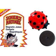 Magnet Krabbeltier - Marienkäfer