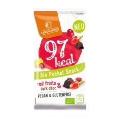 Bio Pocket Snack - Red Fruit & Dark Choc