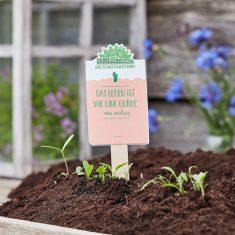 Saatgruß - Das Leben ist wie eine Gurke, nur anders