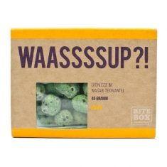 BiteBox - Waassssup?!