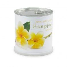 Blumendose Frangipani