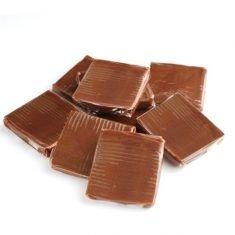 Caramel Squares - Chocolate