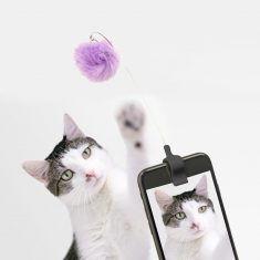 Katzenspielzeug - Kitty Phone Clip