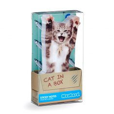 Sticky Notes - Cat in a box