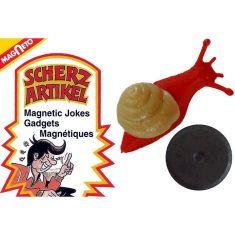 Magnet Krabbeltier - Schnecke