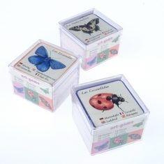 Mini-Memory - Insekten