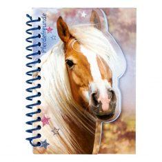 Notizbuch - Pferdefreunde, Haflinger