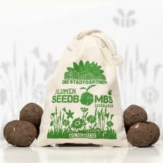 Seedbombs - Wilde Wiese