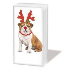 Taschentücher SNIFF - Xmas Bulldog