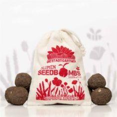 Seedbombs - Blühendes Kornfeld